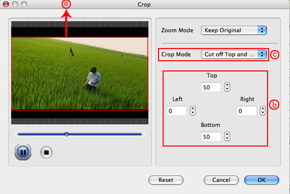 How to rip DVDs and convert Videos on Mac OS X Crop-n3
